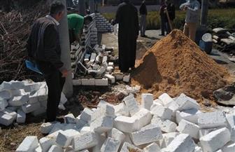 إزالة التعديات على الأراضي الزراعية بدسوق | صور