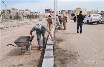 تمهيد الطرق لأعمال الرصف بترعة الملاحة بالرغامة وقرية الحصفة بالرياض بكفر الشيخ | صور