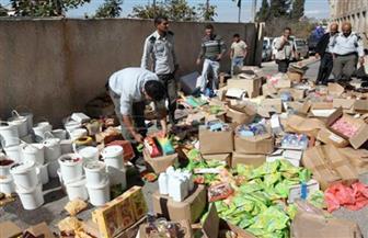 ضبط 1406 عبوات سلع غذائية غير صالحة بمحل فى الإسكندرية