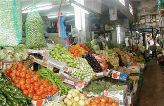 """المزارع والمستهلك يدفعان فاتورة جشع التجار.. وخبراء: """"الحل في إنشاء أسواق بديلة"""""""