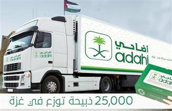 السعودية تخصص 25 ألف ذبيحة من لحوم الهدي والأضاحي لقطاع غزة