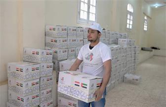 40 ألف كرتونة غذائية من مؤسسة خليفة بن زايد تصل القرى الأكثر احتياجًا في مصر| صور