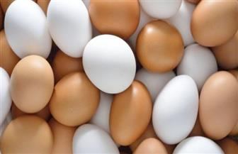 تعرف على أسباب عدم ارتفاع أسعار البيض في شهر رمضان