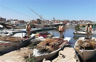 أمن كفرالشيخ يشن حملة لإزالة التعديات علي بحيرة البرلس | صور
