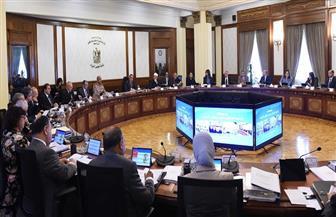مجلس الوزراء يستعرض نتائج نظام الإقرارات الضريبية الإلكتروني