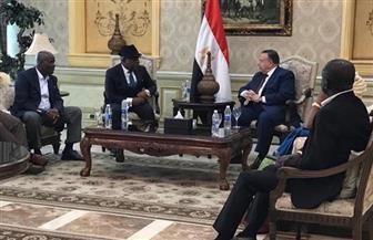 وكيل مجلس النواب يودع رئيس برلمان غانا والوفد المرافق بمطار القاهرة| صور