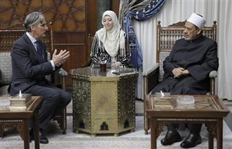 الإمام الأكبر: الأزهر حريص على انفتاح أبنائه على اللغات والثقافات المختلفة | صور