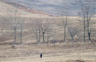 كوريا الشمالية تشهد أسوأ جفاف منذ أكثر من قرن