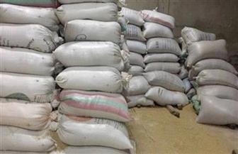 ضبط 22 طن مواد غذائية غير مطابقة للمواصفات بالإسكندرية