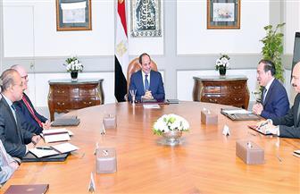 """الرئيس السيسي يستقبل رئيس مجلس إدارة شركة """"نوبل إنرجي"""""""