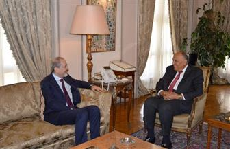 سامح شكري يستقبل نظيره الأردني لبحث العلاقات الثنائية والقضايا الإقليمية ذات الاهتمام المشترك