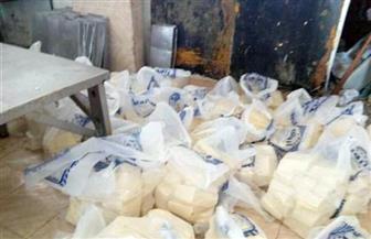 يحتوى على أكثر من 20 طنا.. ضبط مصنع لبيع جبن منتهية الصلاحية واستخدام ملح طعام محظور