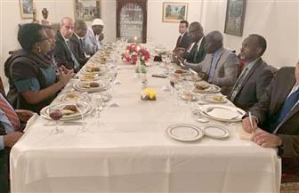 مندوب مصر بالاتحاد الإفريقى يناقش مع وزير خارجية مالي الأسبق الإعداد للقمة المقبلة فى يوليو