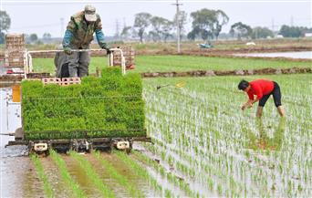 الصين تنتصر في معركة الفقر.. تجربة رائدة في قرية ليانتشانغ.. تعرف عليها