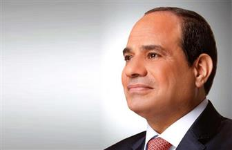 مصر وجنوب إفريقيا.. رؤية مشتركة في مكافحة الإرهاب والعنف والتطرف والتنمية المتكاملة بالقارة