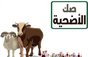 وزير الأوقاف يشيد بمديريتي بورسعيد وكفر الشيخ في تحصيل صكوك الأضاحي