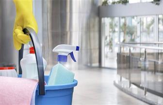 الألمان ينفقون المليارات من أجل تنظيف منازلهم