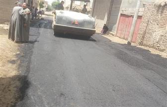 محافظ كفرالشيخ يتابع سير أعمال الرصف بمراكز ومدن المحافظة   صور
