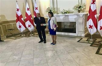 سفير مصر في أرمينيا يقدم أوراق اعتماده لرئيسة جورجيا كسفير غير مقيم | صور