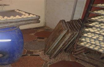 إعدام 900 كجم مواد غذائية في حملات تفتيشية على مصانع ومنافذ بيع كعك العيد بالدقهلية| صور