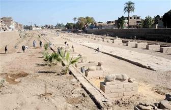 تواصل إخلاء نجع أبو عصبة لاستكمال مشروع كشف طريق الكباش في الأقصر| فيديو