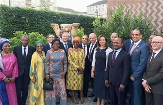 وزير الخارجية الألماني يشيد بالرئاسة المصرية للاتحاد الإفريقي| صور