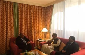 وزير الخارجية يلتقي نظيره الباكستاني على هامش مشاركته في مؤتمر القمة الإسلامي