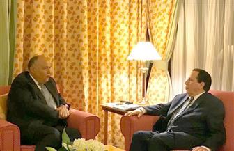 وزير الخارجية يلتقي نظيره التونسي على هامش مشاركتهما في  مؤتمر القمة الإسلامي