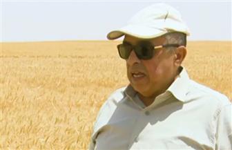 وزير الزراعة: مصر حققت الاكتفاء الذاتي من تقاوي القمح.. والزيادة السكانية تلتهم الإنتاج |فيديو