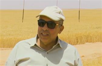 وزير الزراعة يكشف تفاصيل مشروع القمح غرب المنيا: نحصد 30 فدانًا يوميًا |فيديو