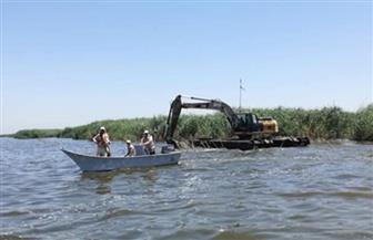 محافظ كفرالشيخ يتابع حملة إزالة التعديات على محمية بحيرة البرلس وضبط أدوات الصيد المخالفة | صور