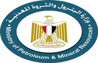 «البترول والثروة المعدنية» تقرر تأجيل «إيجبس» إلى فبراير 2022