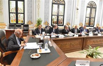 مجلس النواب يوافق على إعلان حالة الطوارئ في البلاد