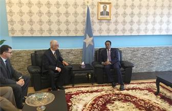 نائب وزير الخارجية يلتقي الرئيس الصومالي في مستهل زيارته إلى مقديشيو