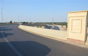 تعرف على أبرز المشروعات التي افتتحها الرئيس السيسي بالإسماعيلية | صور