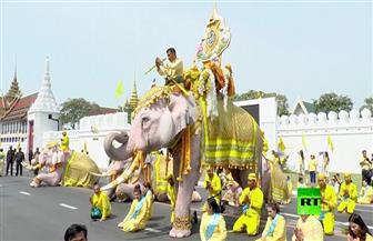 مسيرة أفيال لتحية الملك الجديد في تايلاند