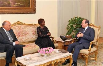 الرئيس السيسي يؤكد استعداد مصر لتقديم الخبرات اللازمة لمنظمة الفرانكفونية | صور