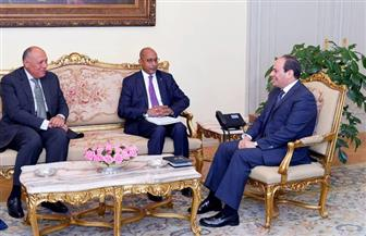 الرئيس السيسي يستقبل المدير التنفيذي لوكالة الاتحاد الإفريقي للتنمية.. ويؤكد اهتمام مصر بدعم القارة