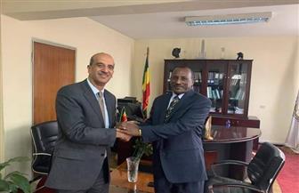 السفير أسامة عبد الخالق يلتقى مفوض الاتحاد الأفريقي للتجارة والصناعة