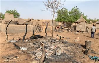 مصر تدين حادث مقتل ٩٥ شخصا في مالي