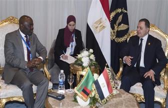 وزير الداخلية يبحث سبل التعاون الأمني مع عدد من نظرائه الأفارقة | صور