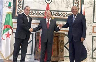 الاجتماع الوزاري للمبادرة الثلاثية حول دعم التسوية السياسية في ليبيا يؤكد: لا يوجد حل عسكري للأزمة الليبية صور
