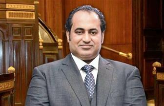 """أمين قطاع الصعيد بـ""""مستقبل وطن"""": مصر أوفت بوعدها للشباب بتنفيذ توصيات المؤتمرات السابقة"""