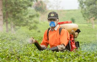 """""""الزراعة"""" تصدر نشرة بالتوصيات الفنية للاستخدام الصحيح والآمن لمبيدات الحشائش"""