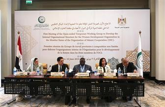 مصر تستضيف الاجتماع الأول لمجموعة العمل المؤقتة لدراسة اللوائح التنظيمية لتنمية المرأة | صور