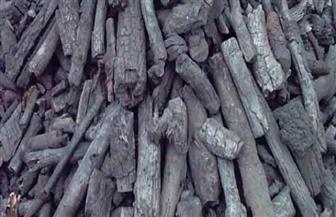 """""""البيئة"""": تصدير 60 ألف طن من الفحم النباتي.. ونجحنا في مواجهة السحابة السوداء"""