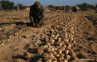 وزير الزراعة بالبرلمان: رصدنا ميزانية 35 مليون جنيه لإنشاء عدد من المزارع