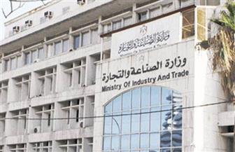 مصر وروسيا توقعان البيان الختامي لفعاليات الدورة الثانية عشرة للجنة المشتركة بالقاهرة