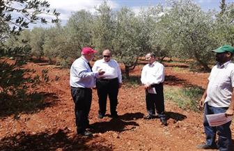 وزير الزراعة يزور مزرعة أبحاث الزيتون التابعة للمعهد الوطني للبحث الزراعي بمراكش | صور