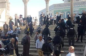 مواجهات فى ساحات المسجد الأقصى بين المصلين وقوات الأمن الإسرائيلية
